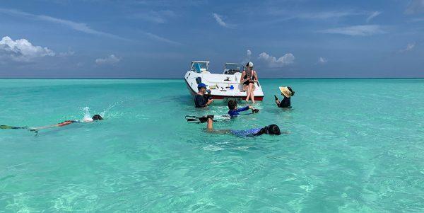 boat excursion and swim in sea of TCI